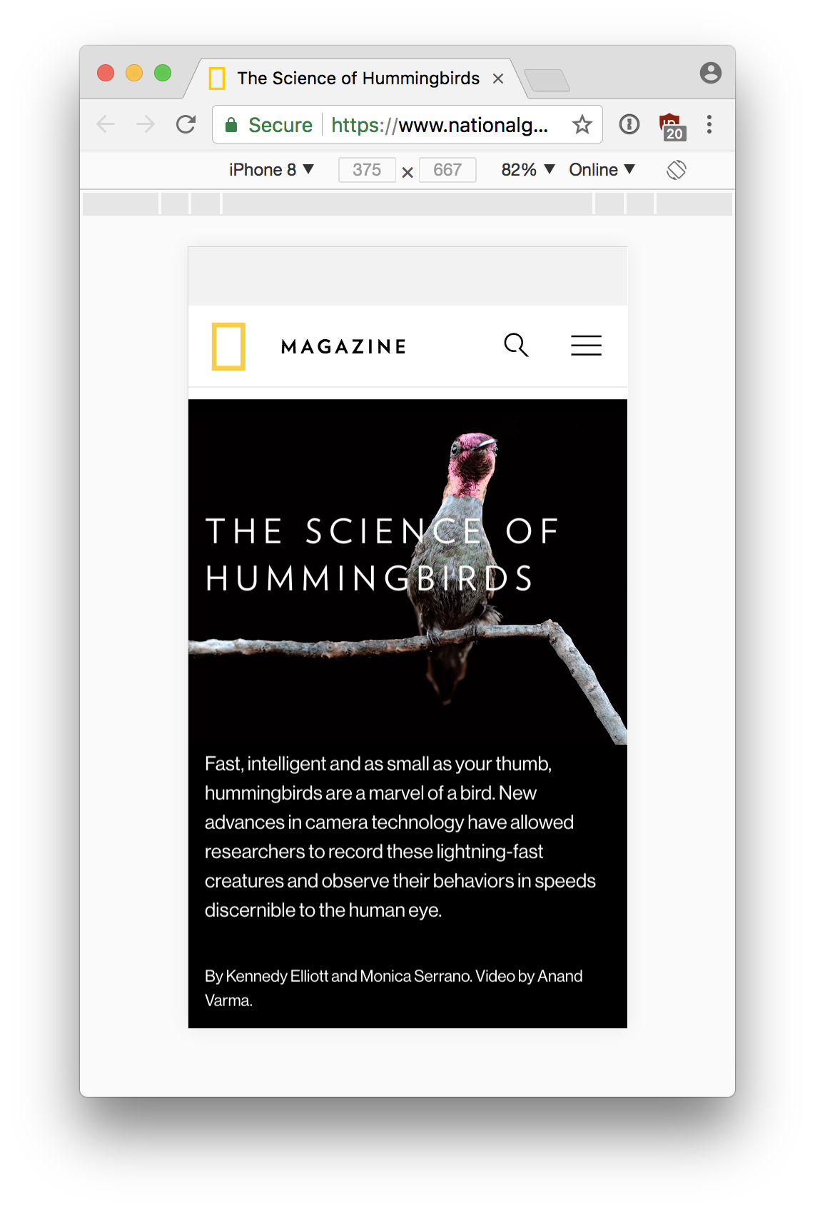 Science of Hummingbirds