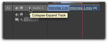 Collapse-expand track