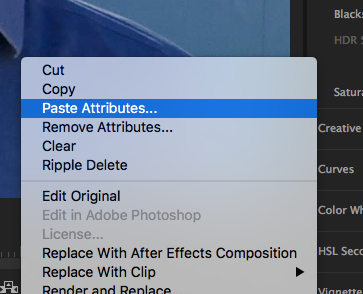 paste attributes