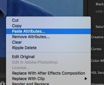 paste attributes premiere pro