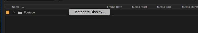 Metadata display