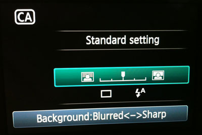 Blur adjustment in Canon T3i